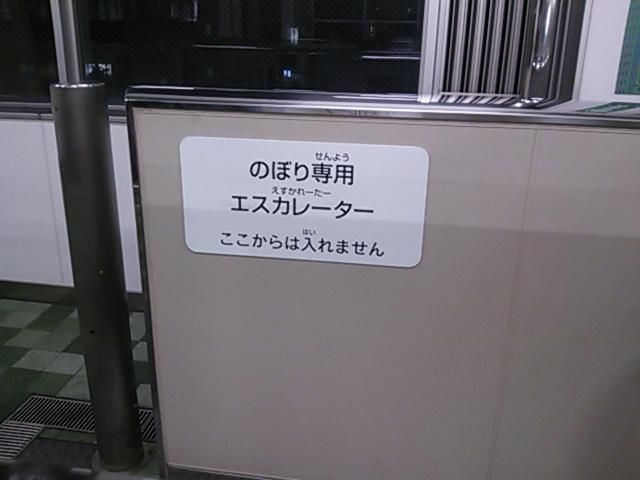 DSC_1486.JPG