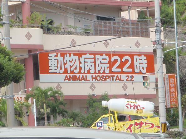 動物病院22時.JPG