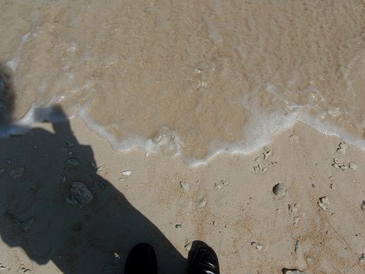 ここの海岸、北の方に向いてるんで影で靴が分かりにくいですね