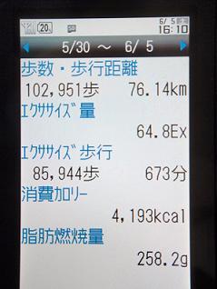 この携帯(auのSH005)買ってから、結構歩くようになりましたね。