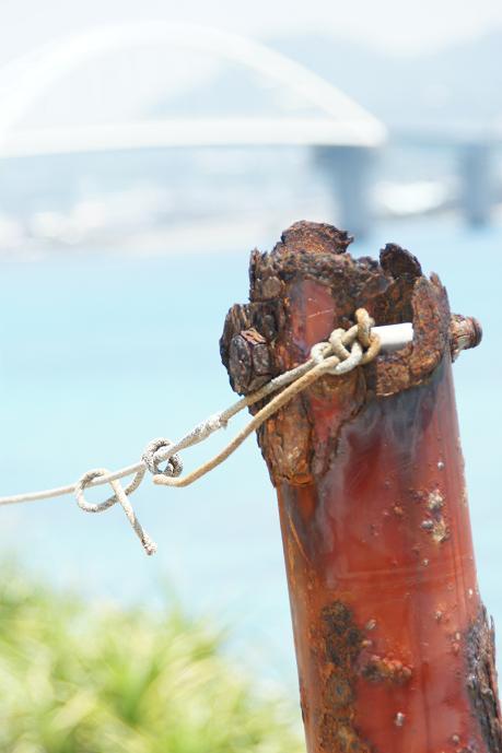こっちも瀬底島で撮りました。思いっきり露出オーバーですねー