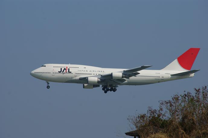たぶん東京発のJAL913便.jpg