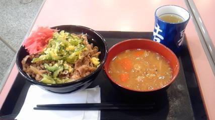 トッピング牛丼ゴーヤー.JPG