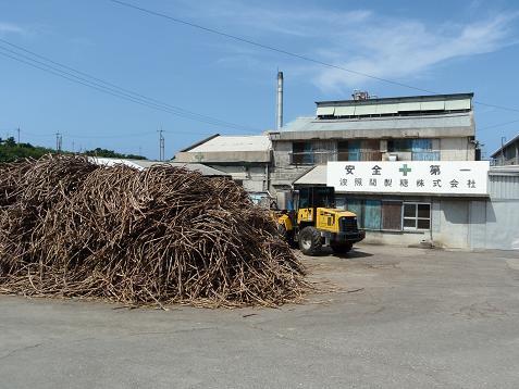製糖業は波照間で最大の産業ですからねー。