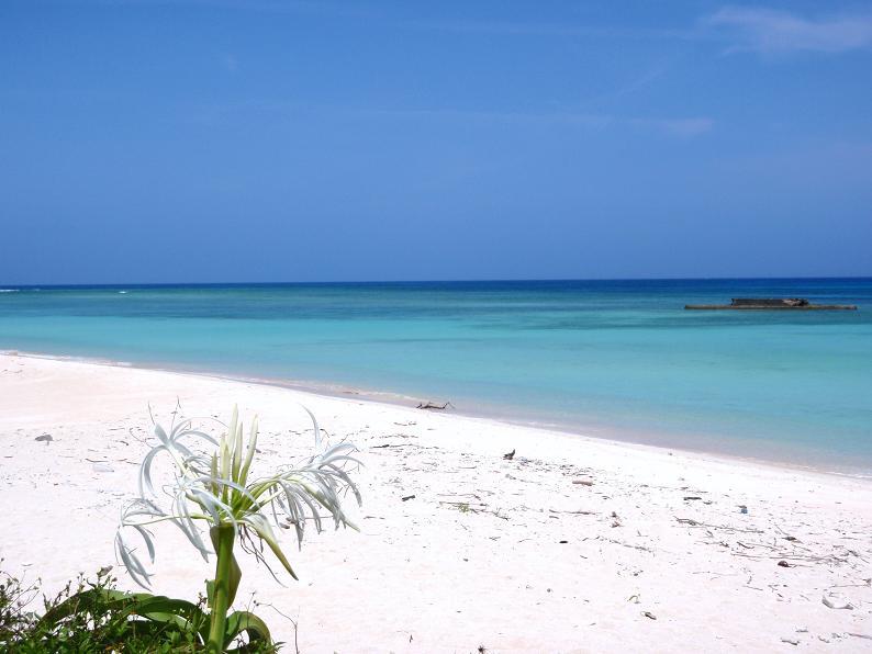 沖縄の方言では北は「ニシ」と読みます。なので読み方は「ニシハマ」。分かりにくいんでガイドブックとかは「ニシ浜」って書いてありますね。